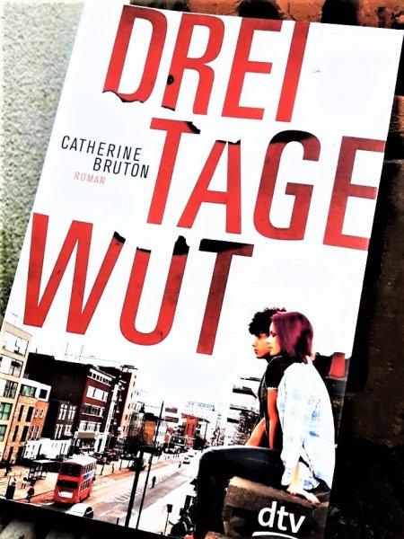 Gesellschaftskritischer Jugendroman - drei Tage Wut