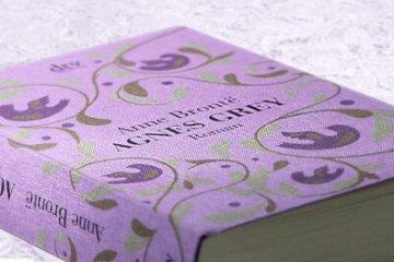anne bronte Agnes Grey roman